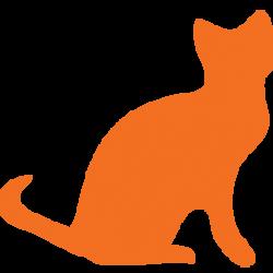 oecat-kedi-icon-png
